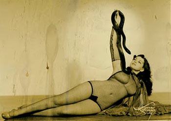Snake dancer Zorita arrested