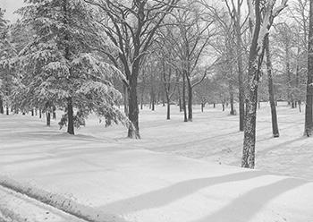 Toledo's White Christmas, 1951
