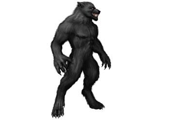 The Defiance Werewolf